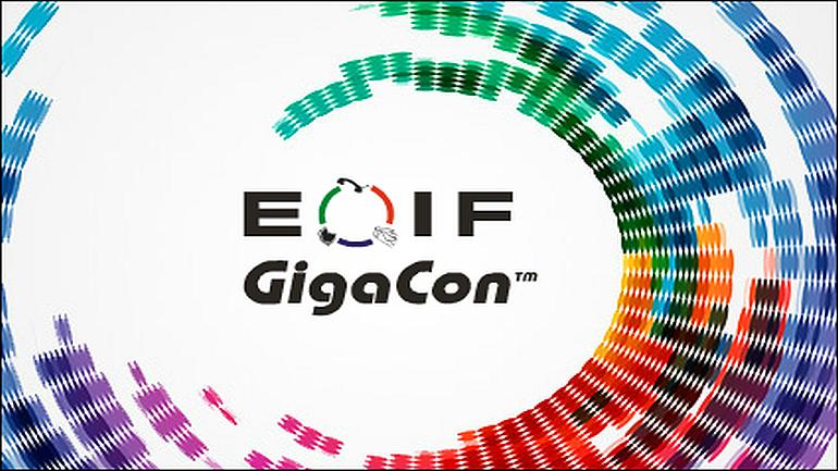 Elektroniczny Obieg Informacji w Firmie 2014