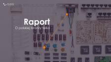 raport-obrazek