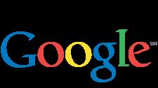google-website-search-engine